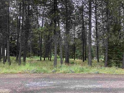 XXX N SHEETS RD, Elk, WA 99009 - Photo 1