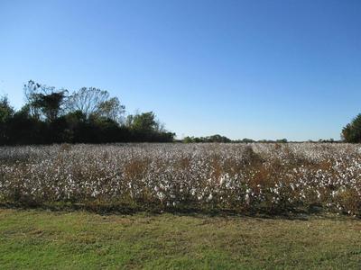 122 AMMONS RD, Sumter, SC 29153 - Photo 1