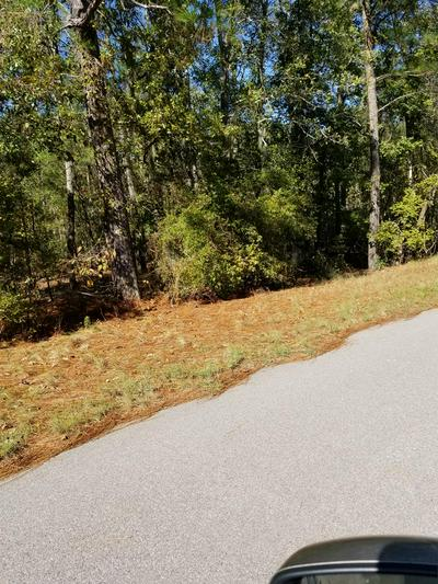 1.1 ACRE LOT 3C GRIFFITH LANE, ELLOREE, SC 29047 - Photo 1