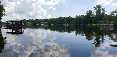 61 RIDGE LAKE DR, Manning, SC 29102 - Photo 2