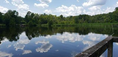 61 RIDGE LAKE DR, Manning, SC 29102 - Photo 1