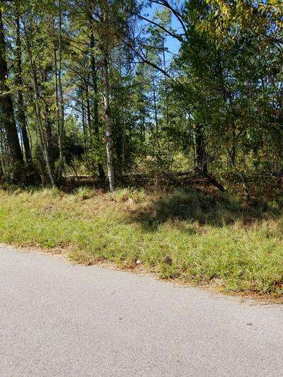 LOT A4 7 ACRES OLD RIVER ROAD, ELLOREE, SC 29047 - Photo 2