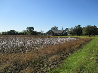 LOT 1 LAKE ASHWOOD RD, Sumter, SC 29153 - Photo 2