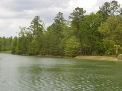 LOT # 29 POPLAR CREEK DR, ELLOREE, SC 29047 - Photo 2
