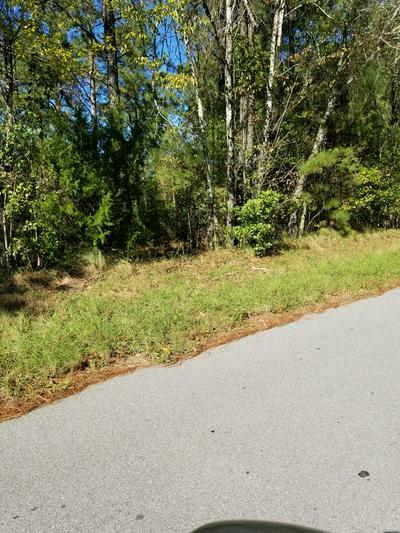 1.1 ACRE LOT 3C GRIFFITH LANE, ELLOREE, SC 29047 - Photo 2