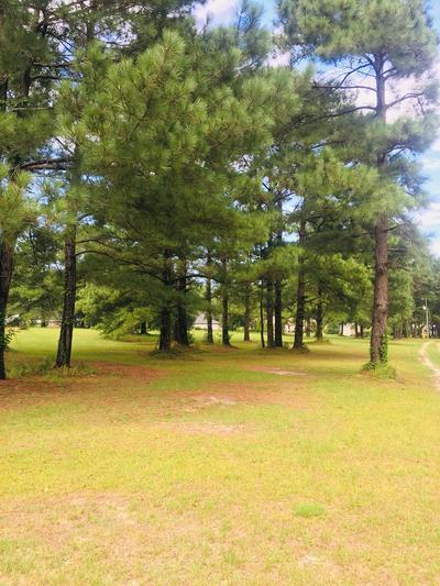 00 MAGGIE LANE, Manning, SC 29102 - Photo 2