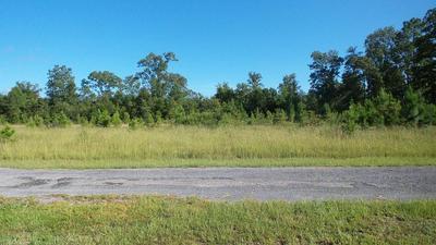 #6 HIGHWAY, Eutawville, SC 29048 - Photo 2