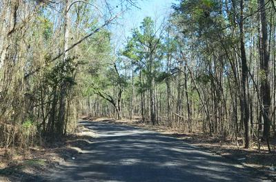 00 CLEARVIEW DR, Manning, SC 29001 - Photo 2