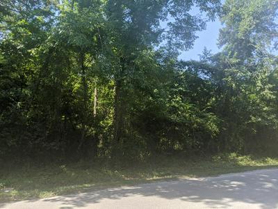 LOT 17 CANVAS BACK DRIVE, Eutawville, SC 29048 - Photo 1
