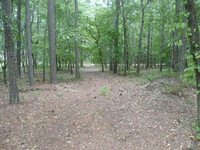 LOT #3 HICKORY LANDING COURT, ELLOREE, SC 29047 - Photo 2