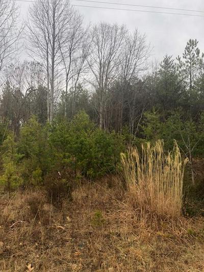 HOLLYWOOD RD, Appomattox, VA 24522 - Photo 2