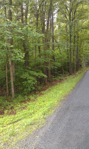 SAXKEY ROAD, Saxe, VA 23967 - Photo 1