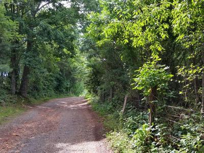 WILD DEER LANE, North Garden, VA 22959 - Photo 1