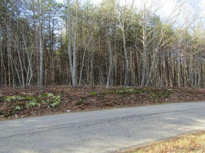 STAUNTON HILL ROAD, Brookneal, VA 24528 - Photo 1