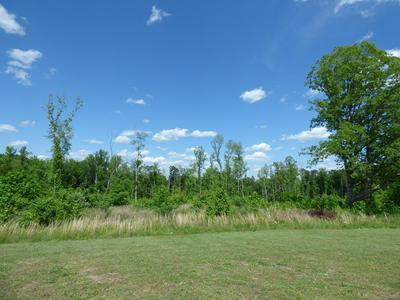 PRINCE EDWARD HWY, Rice, VA 23966 - Photo 2