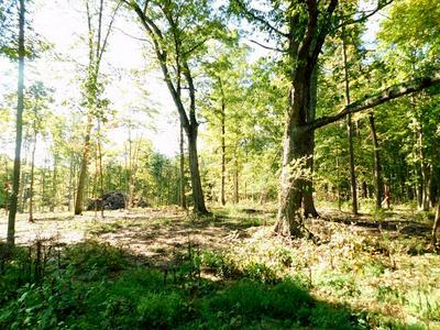 FAIRGROUNDS RD, Farmville, VA 23901 - Photo 1