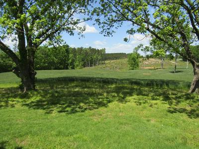 5301 HAMILTON RD, Saxe, VA 23967 - Photo 2