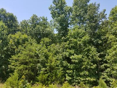 WHEELERS SPRING ROAD, Appomattox, VA 24522 - Photo 2