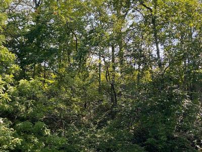 RED HOUSE RD, Appomattox, VA 24522 - Photo 2