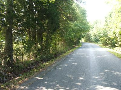 WELSH TRACT ROAD, Charlotte CourtHouse, VA 23923 - Photo 2