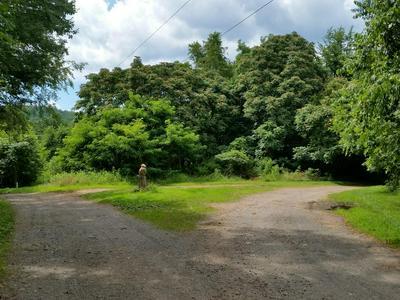 WILD DEER LANE, North Garden, VA 22959 - Photo 2