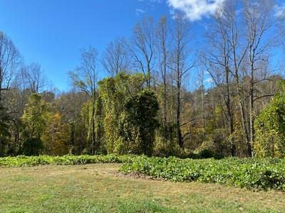 WOODLAWN TRAIL, Appomattox, VA 24522 - Photo 2