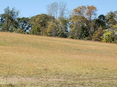 COMFORT LANE, Buckingham, VA 23921 - Photo 2