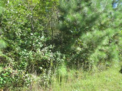 HAMPDEN LANE, Farmville, VA 23901 - Photo 2