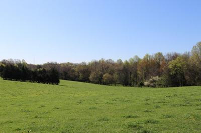 JAMESTOWN ROAD, Farmville, VA 23901 - Photo 1