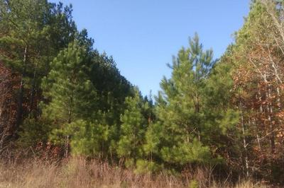 ABILENE ROAD, Farmville, VA 23901 - Photo 1
