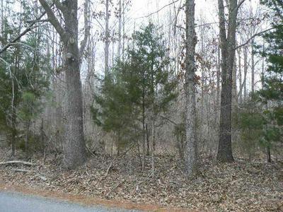 CLINTON, Cumberland, VA 23040 - Photo 1