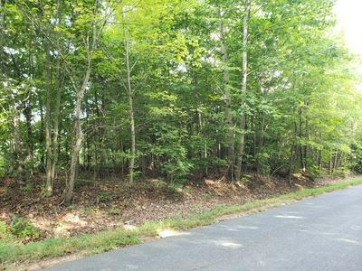 SAINT ANDREWS RD, Buckingham, VA 23921 - Photo 2