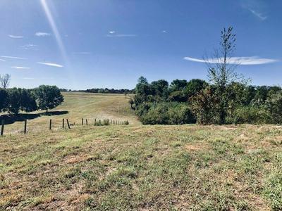 000 WILLIE NELL/JONES CHAPEL RD., Columbia, KY 42728 - Photo 2