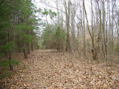 000 S WAINUT GROVE RD., Columbia, KY 42728 - Photo 1
