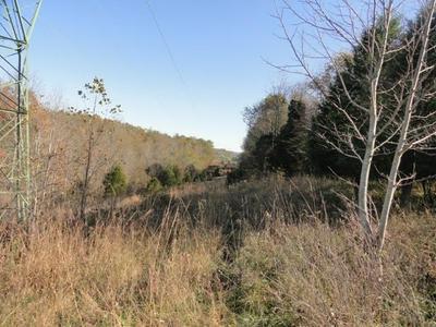 8266 N DIXIE HWY, Bonnieville, KY 42713 - Photo 2