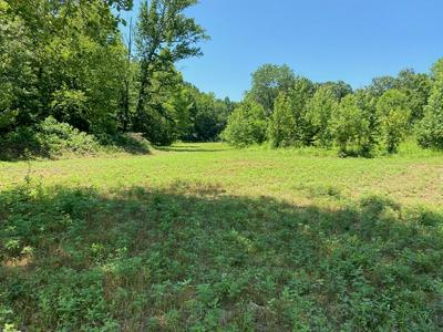 1904 FROEDGE DUBRE RD, Summer Shade, KY 42166 - Photo 2