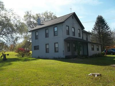 4846 LITTLE IRELAND RD, STARRUCCA, PA 18462 - Photo 1