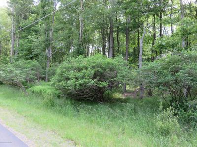 2302T LC LARSON DR, Gouldsboro, PA 18424 - Photo 2