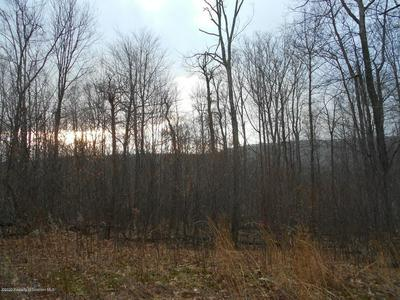 LOT 61 SUMMIT WOODS RD, ROARING BROOK TOWNSHIP, PA 18444 - Photo 2