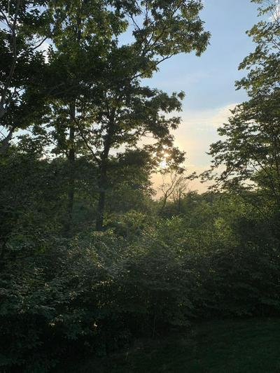 LOT 23 SUMMIT WOODS RD, MOSCOW, PA 18444 - Photo 2