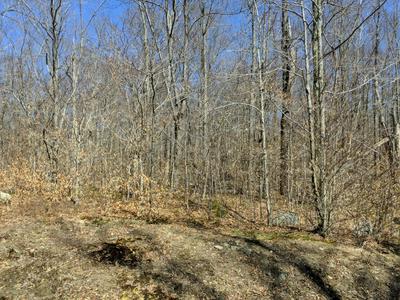 LOT 135 HEMLOCK CT., Gouldsboro, PA 18424 - Photo 2