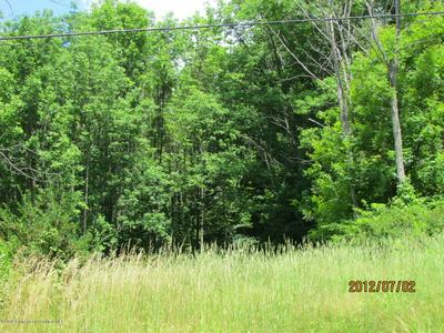 CARBONDALE RD, WAVERLY, PA 18471 - Photo 1