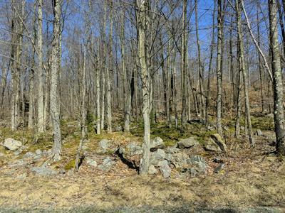 LOT 136 HEMLOCK CT., Gouldsboro, PA 18424 - Photo 2