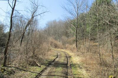 SR 367, Lawton, PA 18828 - Photo 2