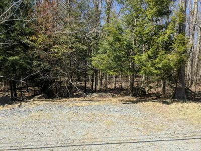 111 LAKEVIEW TIMBERS DR, Gouldsboro, PA 18424 - Photo 2