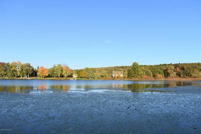 163 BUTLER LAKE LN, Susquehanna, PA 18847 - Photo 2
