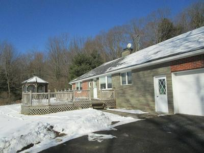 20220 STATE ROUTE 167, Brackney, PA 18812 - Photo 1