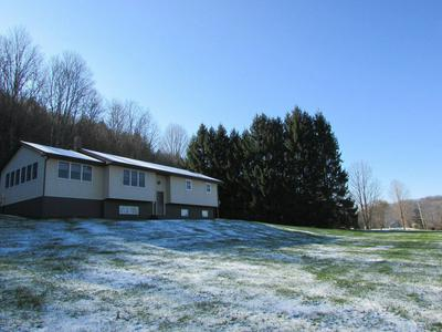 10532 STATE ROUTE 706, MONTROSE, PA 18801 - Photo 1