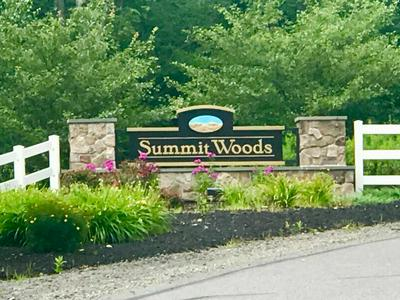 LOT 106 SUMMIT WOODS RD, MOSCOW, PA 18444 - Photo 1