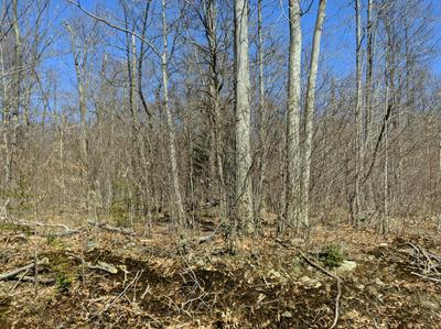 LOT 130 HEMLOCK CT., Gouldsboro, PA 18424 - Photo 2